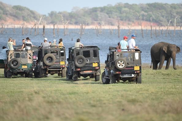 Tourists on jeeps watch a Sri Lankan elephant during a safari at Kaudulla national park in Habarana. (Photo: ISHARA S. KODIKARA/AFP/Getty Images)