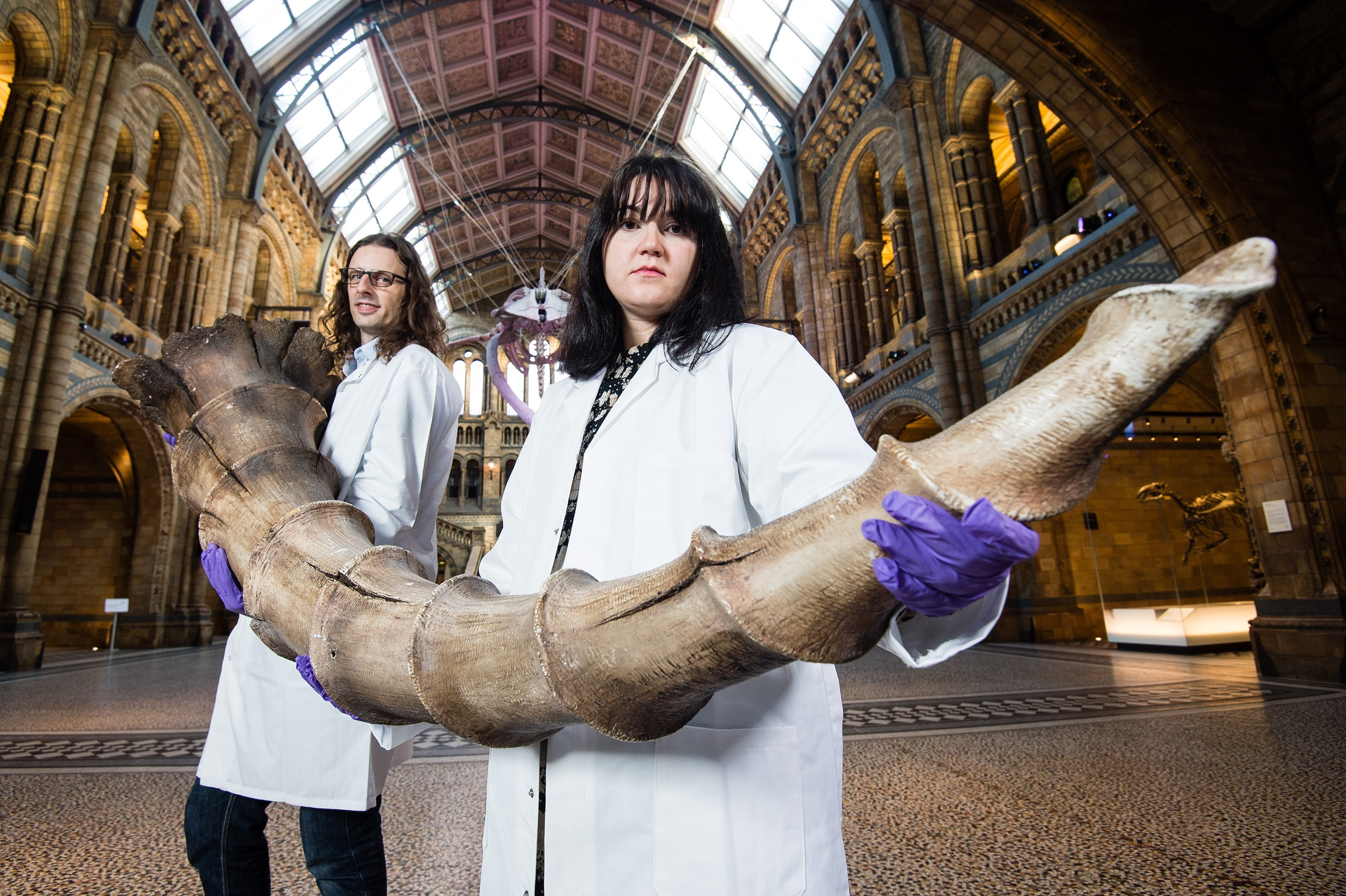 MAGICAL CONNECTION: Roberto Portela Miguez (left) and Efstratia Verveniotou carry an Erumpent horn into the Natural History Museum (© Jeff Spicer/Getty Images)