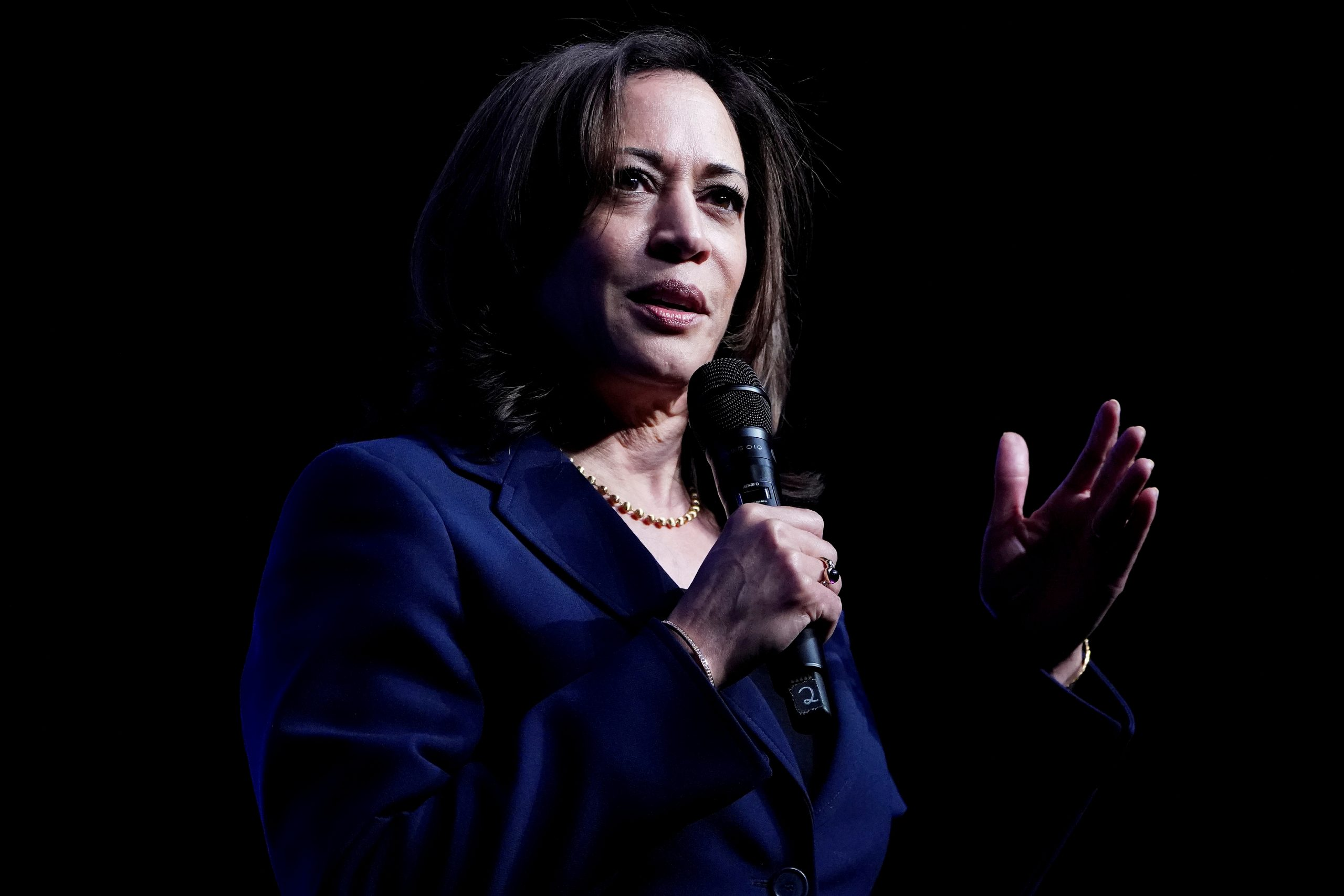 """She is a person who never forgets her roots and believes in family values,"" said American senator Kamala Harris's aunt Sarala Gopalan. (REUTERS/Carlo Allegri/File Photo)"
