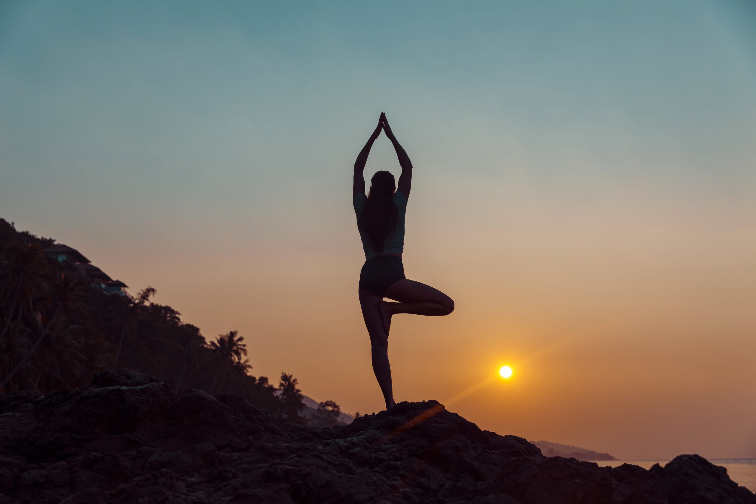 """VaYU aims to """"produce the best modern-day yoga practitioners who would not only spread peace but make planet Earth a better place to live"""".        (Photo: iStock)"""