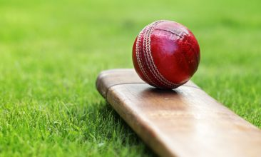 CRICKET - Under bamboo current MCC rules, bats made from bamboo would be illegal. (iStock Image)