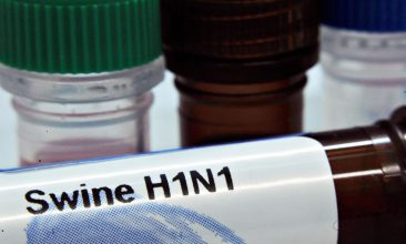 Business - DNA test kits of the the influenza A(H1N1) or Swine Flu virus prepared by PrimerDesign Ltd are displayed at the company laboratory in Southampton on May 2, 2009.  Two cases of swine flu apparently transmitted to people who had not travelled recently to Mexico were reported by authorities in Britain, as the number infected there rose to 13. AFP Photo/Leon NEAL (Photo credit should read Leon Neal/AFP via Getty Images)